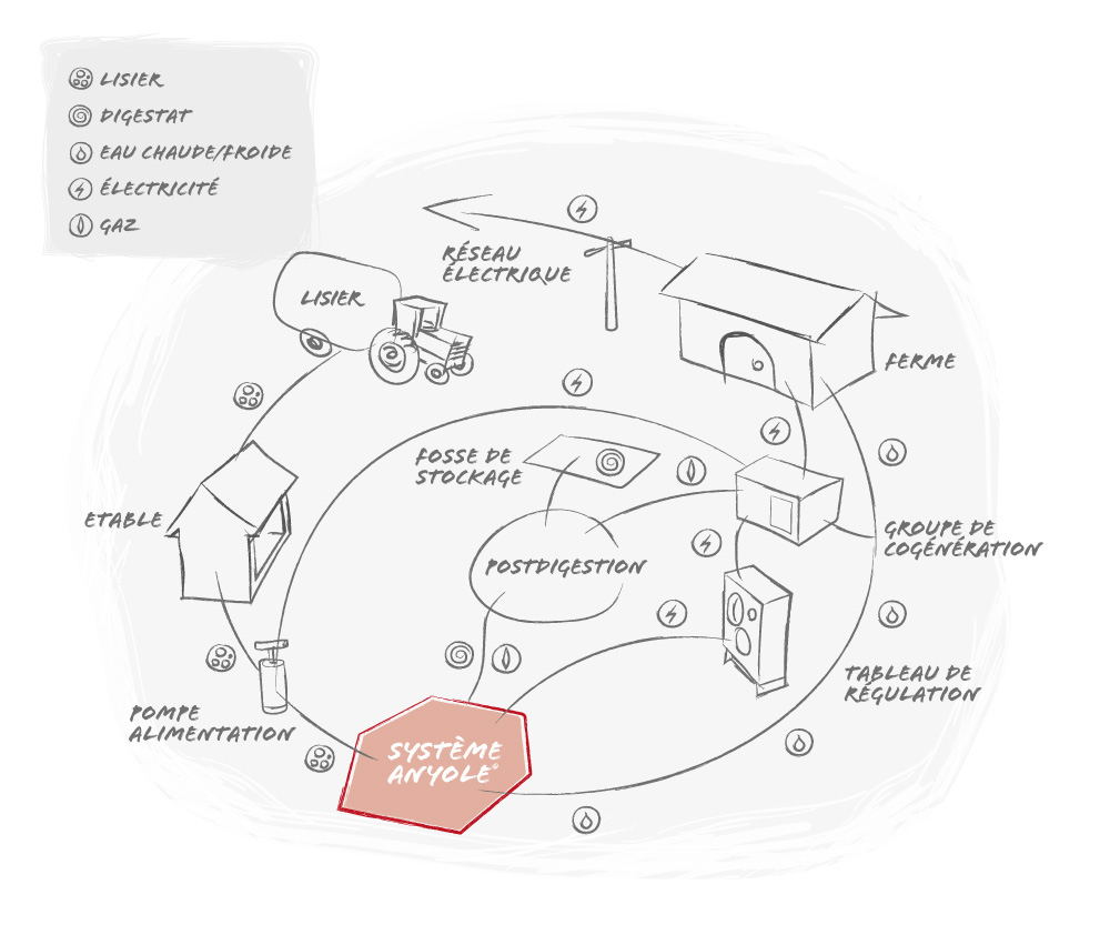 Schema du processus